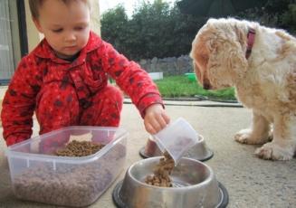 nino-solidario-alimentando-su-perro